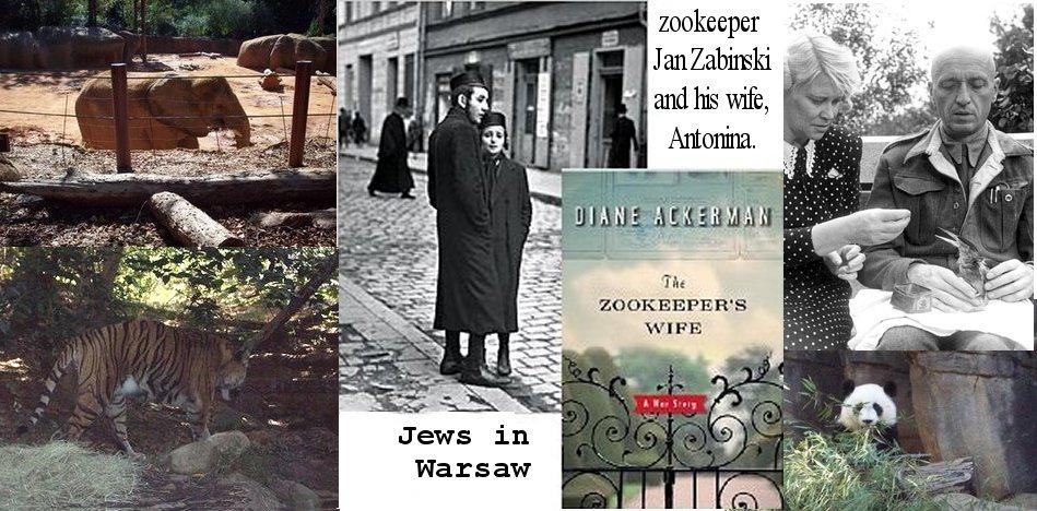 Zookeeper's Ammo